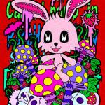 ドロリン、キノコとウサギ